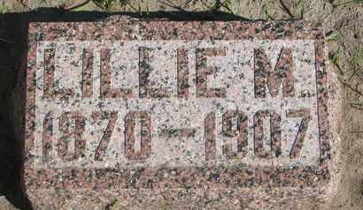 HATCH, LILLIE M. - Union County, South Dakota | LILLIE M. HATCH - South Dakota Gravestone Photos