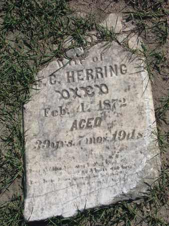 HERRING, LOUELLA J. ? - Union County, South Dakota   LOUELLA J. ? HERRING - South Dakota Gravestone Photos