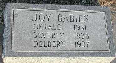 JOY, DELBERT - Union County, South Dakota | DELBERT JOY - South Dakota Gravestone Photos