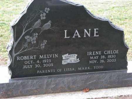 LANE, IRENE CHLOE - Union County, South Dakota | IRENE CHLOE LANE - South Dakota Gravestone Photos