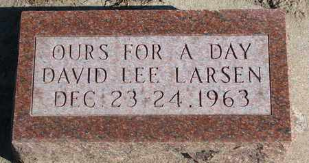 LARSEN, DAVID LEE - Union County, South Dakota | DAVID LEE LARSEN - South Dakota Gravestone Photos