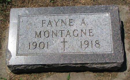 MONTAGNE, FAYNE A. - Union County, South Dakota | FAYNE A. MONTAGNE - South Dakota Gravestone Photos