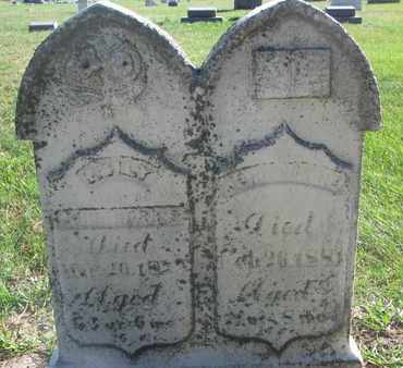 MORRIS, JOHN - Union County, South Dakota | JOHN MORRIS - South Dakota Gravestone Photos