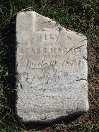 MORRIS, EMILY P. - Union County, South Dakota | EMILY P. MORRIS - South Dakota Gravestone Photos