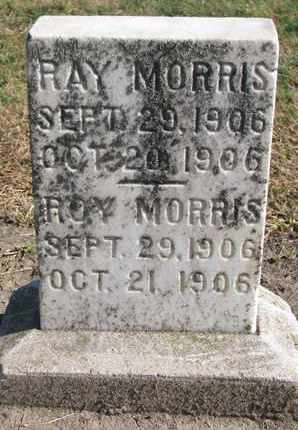 MORRIS, RAY - Union County, South Dakota | RAY MORRIS - South Dakota Gravestone Photos
