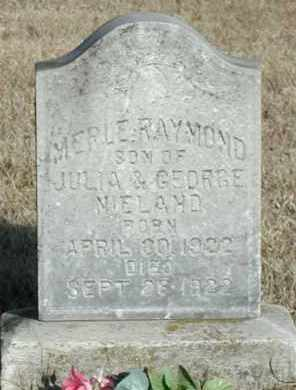 NIELAND, MERLE RAYMOND - Union County, South Dakota | MERLE RAYMOND NIELAND - South Dakota Gravestone Photos