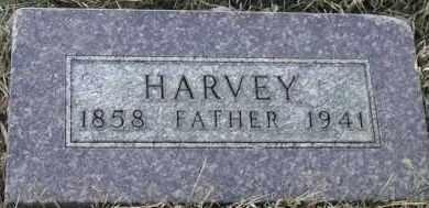 NOGGLE, HARVEY - Union County, South Dakota   HARVEY NOGGLE - South Dakota Gravestone Photos