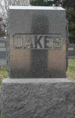 OAKES, *PLOT - Union County, South Dakota | *PLOT OAKES - South Dakota Gravestone Photos
