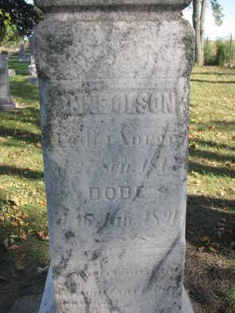 OLSON, ANNE (CLOSEUP) - Union County, South Dakota   ANNE (CLOSEUP) OLSON - South Dakota Gravestone Photos