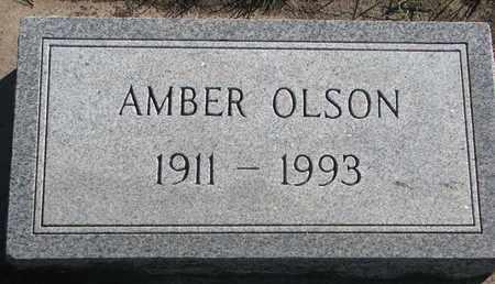 OLSON, AMBER - Union County, South Dakota | AMBER OLSON - South Dakota Gravestone Photos