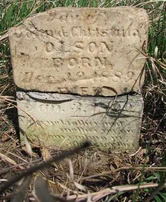OLSON, ANNA M. - Union County, South Dakota | ANNA M. OLSON - South Dakota Gravestone Photos