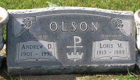 OLSON, ANDREW D. - Union County, South Dakota   ANDREW D. OLSON - South Dakota Gravestone Photos