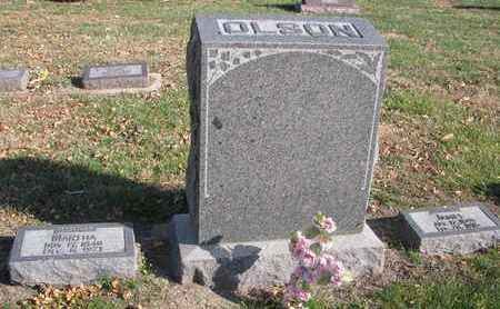 OLSON, *FAMILY PLOT - Union County, South Dakota | *FAMILY PLOT OLSON - South Dakota Gravestone Photos