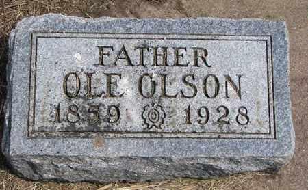 OLSON, OLE - Union County, South Dakota | OLE OLSON - South Dakota Gravestone Photos
