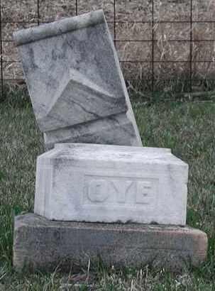 OYE, *PLOT - Union County, South Dakota | *PLOT OYE - South Dakota Gravestone Photos