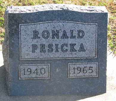 PESICKA, RONALD - Union County, South Dakota | RONALD PESICKA - South Dakota Gravestone Photos