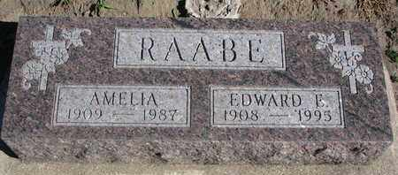 RAABE, EDWARD E. - Union County, South Dakota | EDWARD E. RAABE - South Dakota Gravestone Photos