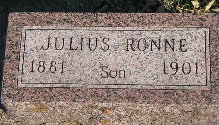 RONNE, JULIUS - Union County, South Dakota | JULIUS RONNE - South Dakota Gravestone Photos