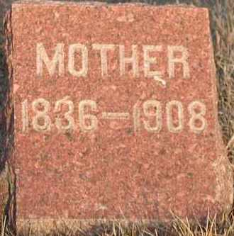 SCHNEIDERHEINZE, ANNA ELIZABETH - Union County, South Dakota | ANNA ELIZABETH SCHNEIDERHEINZE - South Dakota Gravestone Photos