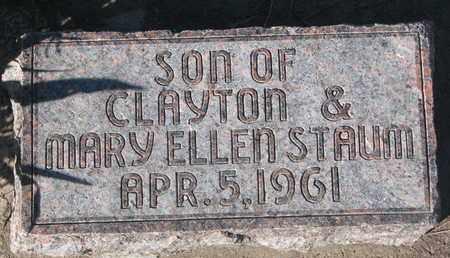 STAUM, SON - Union County, South Dakota | SON STAUM - South Dakota Gravestone Photos