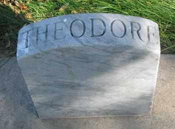 THOMSON, THEODORE - Union County, South Dakota   THEODORE THOMSON - South Dakota Gravestone Photos