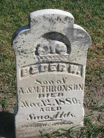 THRONSON, PEDER W. - Union County, South Dakota | PEDER W. THRONSON - South Dakota Gravestone Photos