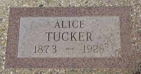 TUCKER, ALICE - Union County, South Dakota | ALICE TUCKER - South Dakota Gravestone Photos