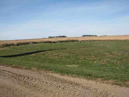 *VIEW, FROM SOUTH - Union County, South Dakota   FROM SOUTH *VIEW - South Dakota Gravestone Photos