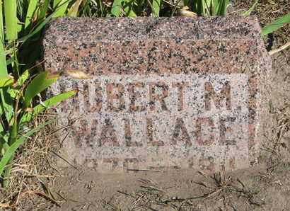 WALLACE, HUBERT M. - Union County, South Dakota | HUBERT M. WALLACE - South Dakota Gravestone Photos