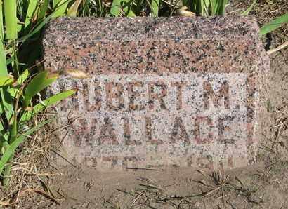 WALLACE, HUBERT M. - Union County, South Dakota | HUBERT M. WALLACE - South Dakota Gravestone Photos