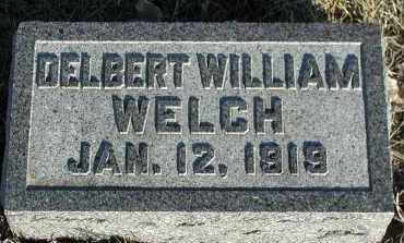 WELCH, DELBERT WILLIAM - Union County, South Dakota | DELBERT WILLIAM WELCH - South Dakota Gravestone Photos