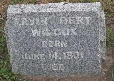 WILCOX, ERVIN BERT - Union County, South Dakota | ERVIN BERT WILCOX - South Dakota Gravestone Photos