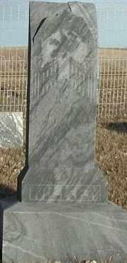 WILKEN, ANNA - Union County, South Dakota | ANNA WILKEN - South Dakota Gravestone Photos