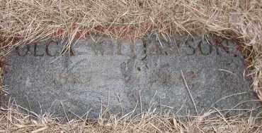 WILLIAMSON, OLGA - Union County, South Dakota | OLGA WILLIAMSON - South Dakota Gravestone Photos