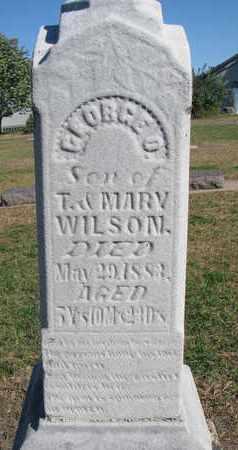 WILSON, GEORGE O. - Union County, South Dakota | GEORGE O. WILSON - South Dakota Gravestone Photos