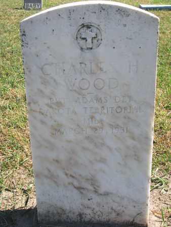 WOOD, CHARLES HENRY (MILITARY-DAKOTA TERRITORY) - Union County, South Dakota | CHARLES HENRY (MILITARY-DAKOTA TERRITORY) WOOD - South Dakota Gravestone Photos