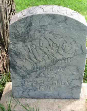 WYNN, ANDREW - Union County, South Dakota | ANDREW WYNN - South Dakota Gravestone Photos