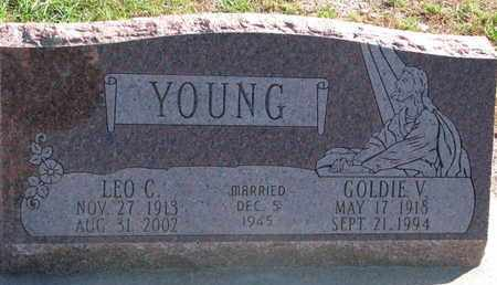YOUNG, LEO C. - Union County, South Dakota   LEO C. YOUNG - South Dakota Gravestone Photos