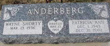 ANDERBERG, PATRICIA ANN - Yankton County, South Dakota | PATRICIA ANN ANDERBERG - South Dakota Gravestone Photos
