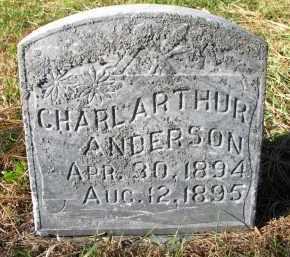 ANDERSON, CHARL ARTHUR - Yankton County, South Dakota | CHARL ARTHUR ANDERSON - South Dakota Gravestone Photos