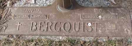 BERGQUIST, DAVID - Yankton County, South Dakota | DAVID BERGQUIST - South Dakota Gravestone Photos