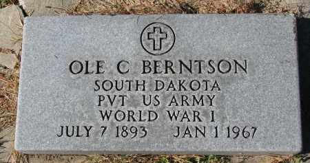 BERNTSON, OLE C. (WW I) - Yankton County, South Dakota | OLE C. (WW I) BERNTSON - South Dakota Gravestone Photos