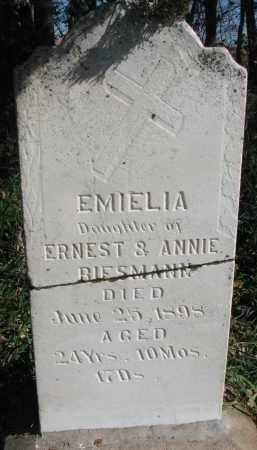 BIESMANN, EMIELIA - Yankton County, South Dakota | EMIELIA BIESMANN - South Dakota Gravestone Photos