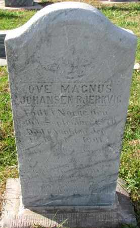 JOHANSEN BJERKVIG, OVE MAGNUS - Yankton County, South Dakota | OVE MAGNUS JOHANSEN BJERKVIG - South Dakota Gravestone Photos