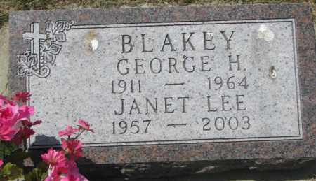 BLAKEY, JANET LEE - Yankton County, South Dakota | JANET LEE BLAKEY - South Dakota Gravestone Photos