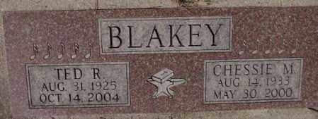 BLAKEY, CHESSIE M. - Yankton County, South Dakota | CHESSIE M. BLAKEY - South Dakota Gravestone Photos