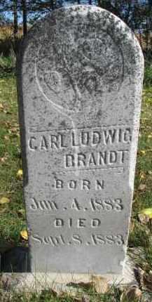BRANDT, CARL LUDWIG - Yankton County, South Dakota | CARL LUDWIG BRANDT - South Dakota Gravestone Photos