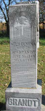 BRANDT, WILHELMINA - Yankton County, South Dakota | WILHELMINA BRANDT - South Dakota Gravestone Photos