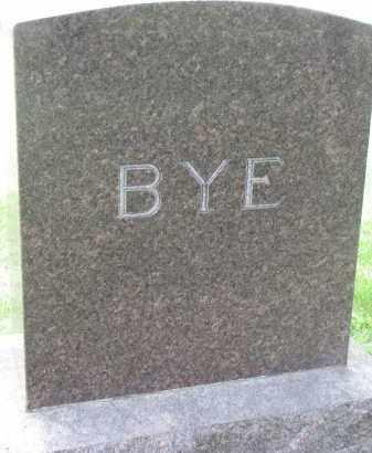 BYE, FAMILY STONE - Yankton County, South Dakota | FAMILY STONE BYE - South Dakota Gravestone Photos
