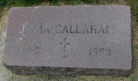 CALLAHAN, JULIA - Yankton County, South Dakota | JULIA CALLAHAN - South Dakota Gravestone Photos